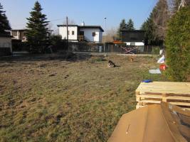 Pachtgrund 3426 Muckendorf abzugeben / Nähe Tulln