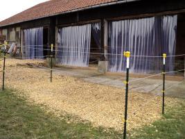 Paddock-und Innenboxen sowie Fohlenlaufstall frei