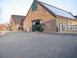 Paddockboxen in Wesel frei - allergikergeeignet - neue Anlage