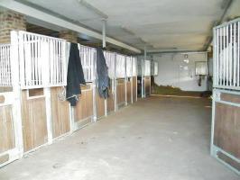 Foto 5 Paddockboxen in Wesel frei - allergikergeeignet - neue Anlage