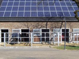 Foto 6 Paddockboxen in Wesel frei - allergikergeeignet - neue Anlage