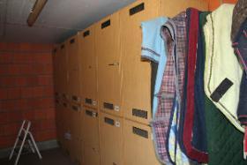 Foto 14 Pensionsboxen / Paddockboxen zu vermieten!