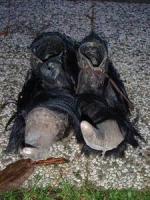 Perchten Schuhe