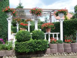 pergola 3m x 3m mit 4 st ck sandsteins ulen in angersdorf. Black Bedroom Furniture Sets. Home Design Ideas