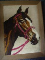 Foto 2 Pferd