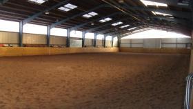 Pferde Boxen frei in 28816 Stuhr, FN Mitglied Reitstall Buschmann