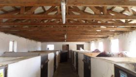Foto 2 Pferde Boxen frei in 28816 Stuhr, FN Mitglied Reitstall Buschmann