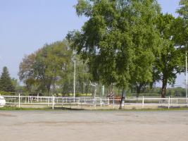 Foto 3 Pferde Boxen frei in 28816 Stuhr, FN Mitglied Reitstall Buschmann