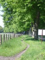 Foto 4 Pferde Boxen frei in 28816 Stuhr, FN Mitglied Reitstall Buschmann