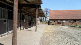 Foto 6 Pferde Boxen frei in 28816 Stuhr, FN Mitglied Reitstall Buschmann