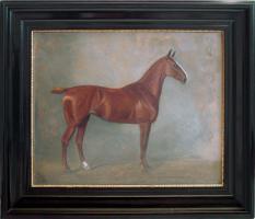Pferde in �l- jetzt g�nstig kaufen!