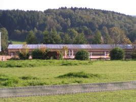 Foto 2 Pferdebox