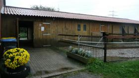 Pferdebox mit Außenpaddock in den Waltroper Rieselfeldern