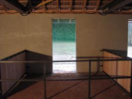 Foto 3 Pferdebox im neuen Außenklimastall