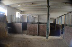Foto 2 Pferdeboxen