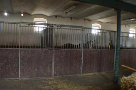 Foto 3 Pferdeboxen