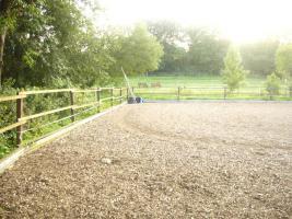 Foto 3 Pferdeboxen mit großen Paddocks in toller Natur