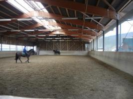 Foto 4 Pferdeboxen zu vermieten