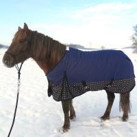 Pferdedecken, Westerntrensen und Halfter mit 20 % Rabatt bei Speeda