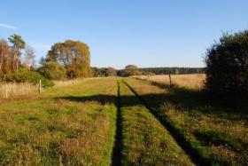 Foto 3 Pferdehof Lüneburger Heide