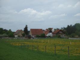 Foto 4 Pferdehof Stetten hat Plätze frei
