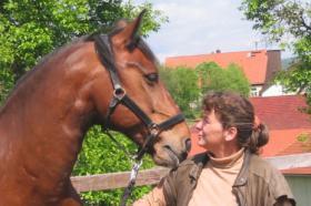 Foto 2 Pferdehof, Bauernhof zur Pferdehaltung, kleine Reitanlage
