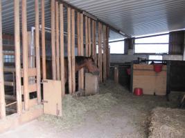 Foto 4 Pferdehof, Bauernhof zur Pferdehaltung, kleine Reitanlage