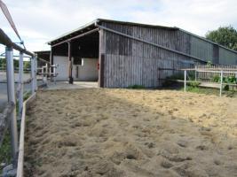 Foto 8 Pferdehof, Bauernhof zur Pferdehaltung, kleine Reitanlage
