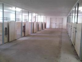 Foto 2 Pferdestall  in Wilhermsdorf  sucht nette Einsteller