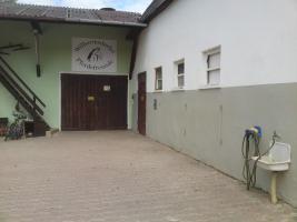 Foto 7 Pferdestall  in Wilhermsdorf  sucht nette Einsteller