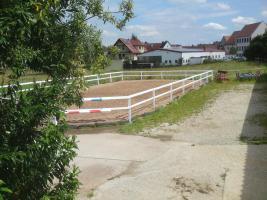 Foto 8 Pferdestall  in Wilhermsdorf  sucht nette Einsteller