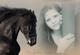 Pferdesüchtige Anfängerin sucht Pflege Pony/Pferd