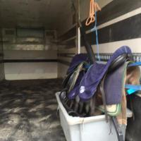 Foto 3 Pferdetransporter Scania R164