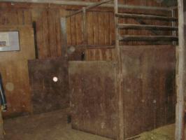 Foto 3 Platz in Offenstall frei