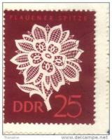 Foto 3 Plauener Spitze