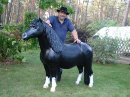 Pony als Deko für Ihren Salon ....