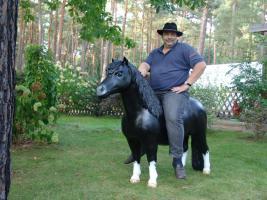 Foto 2 Pony als Deko für Ihren Salon ....
