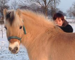 Ponys!!!