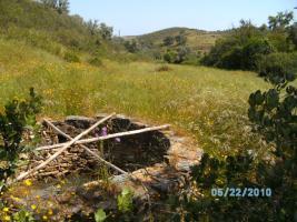 Foto 2 Portugal 4,95 ha Land mit 80 qm Haus