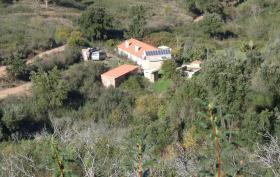 Foto 10 Portugal, Monchique, Hinterland, teilrenovierte Farm - Selbstversorger