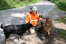 Foto 3 Pressebericht RALF SPIES in Partner Hund