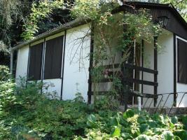 Privates Grundstück - Garten - in Sangerhausen