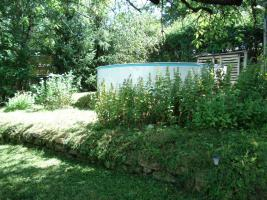 Foto 2 Privates Grundstück - Garten - in Sangerhausen