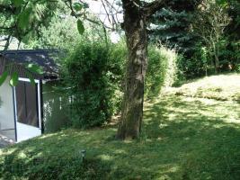 Foto 3 Privates Grundstück - Garten - in Sangerhausen