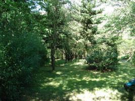 Foto 4 Privates Grundstück - Garten - in Sangerhausen