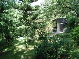 Foto 6 Privates Grundstück - Garten - in Sangerhausen