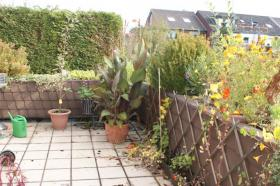 Foto 8 Provfrei! Nachmieter zum 01.12/01.01 85qm², große Terrasse, EG, Neuss!