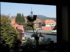 Foto 2 Provisionsfrei! Wohnen und Arbeiten unter einem Dach