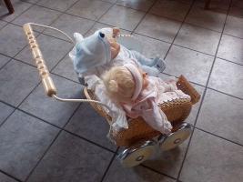 Foto 3 Puppenwagen mit Zwillingspuppen