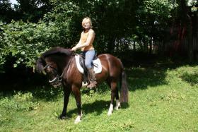 Foto 3 Quarter Horse Mix